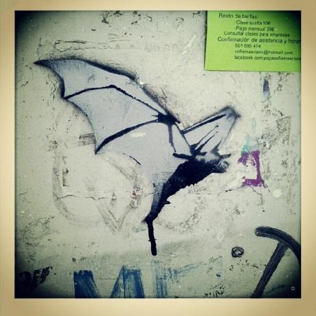 Skinny bat