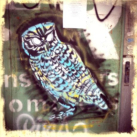 Tu-whit, tu-who: a street owl near Sanllehy